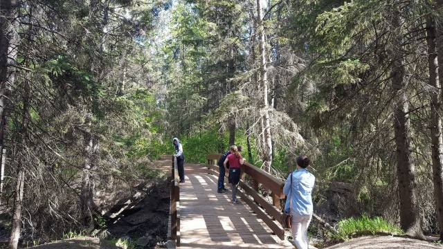 Red Deer wooden bridge.jpg
