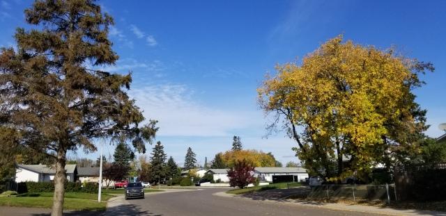 fall 2019 walk - 2