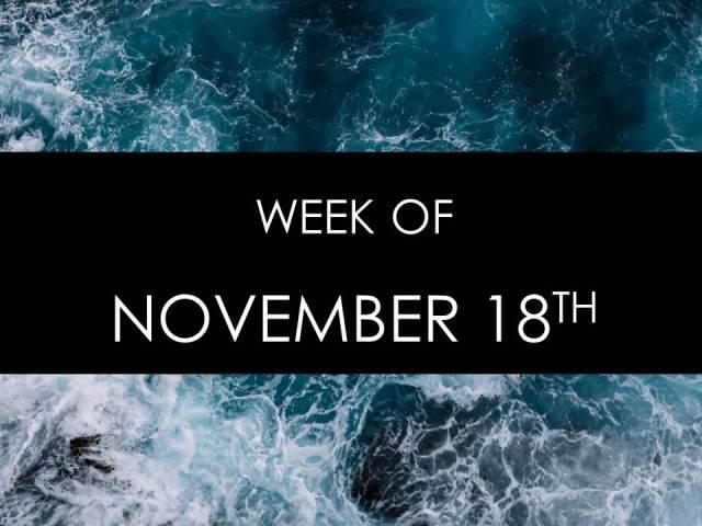 November 8